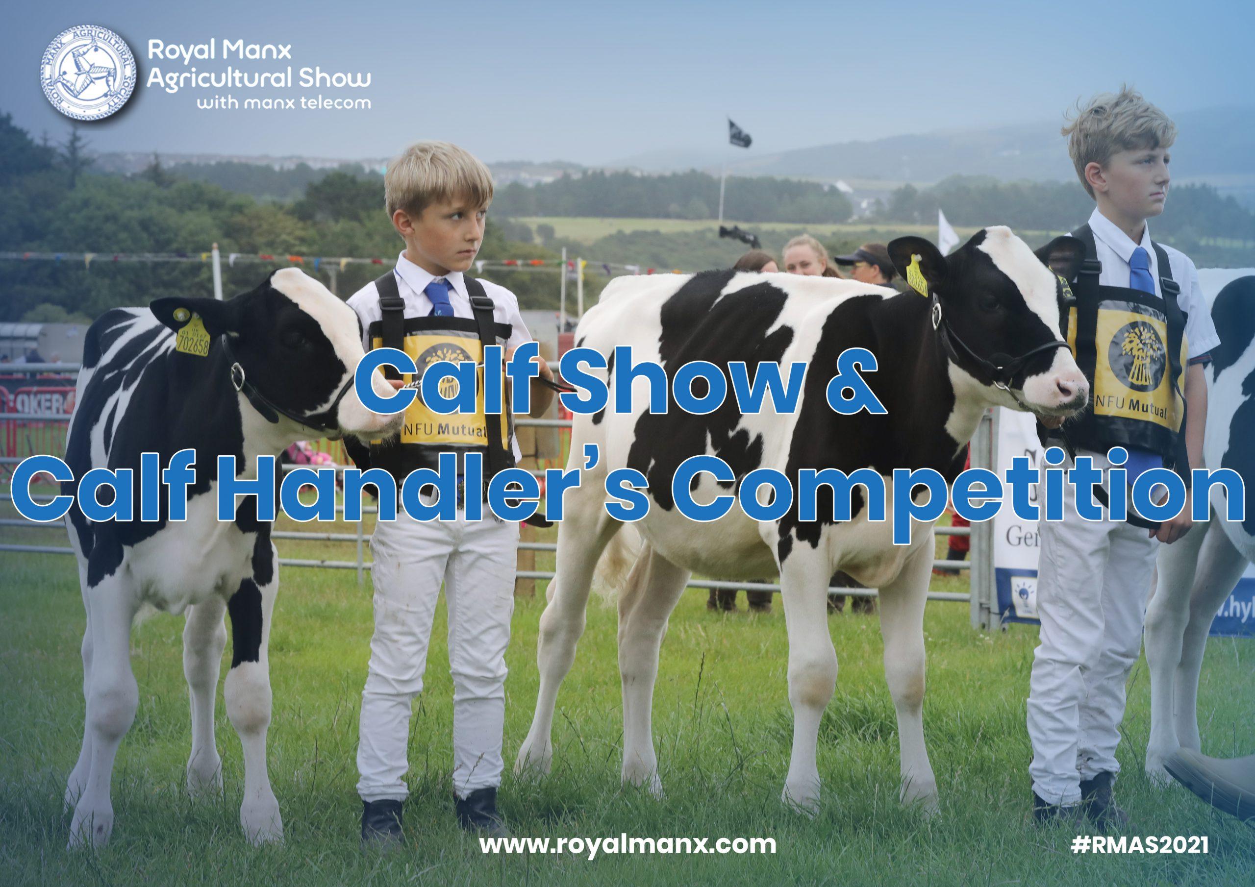 Livestock & Marquee Judging